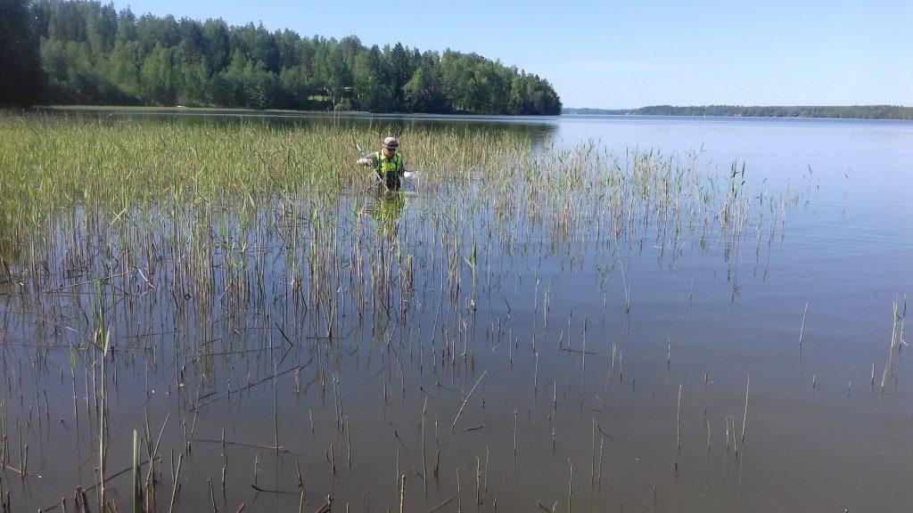 Gäddynglen i Enäjärvi sjö i Vichtis